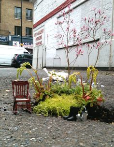 British artist/gardener Steve Wheen has been installing these gardens around East London for the past year and a half