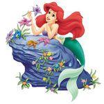 Ariel on rock.jpg (34 KB)