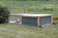Chicken Tractor #chicken #coop #homestead