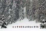 Davos, Switzerland - A group of snowshoe hikers make their way across the snowy terrain.    #brrrr