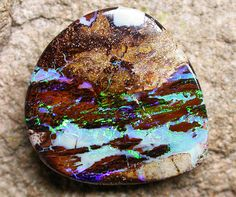 Double sided boulder wood fossil opal, opalized wood, wood replacement opal, fossil opal