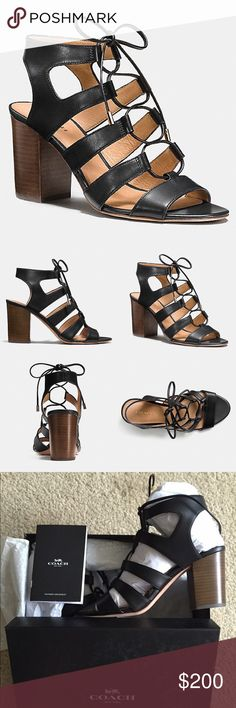 | Coach Lace-Up Larissa City Sandals BNWT calf leather lace-up sandals with stacked block heel. Never worn. Comes with box. ⚠️ONLY AVAILABLE UNTIL JUNE 30!⚠️ Coach Shoes Sandals