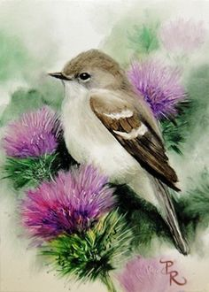 NEW THEME:  Birds and Floral in shades of purples and greens