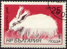 Znaczek: Angora Rabbit (Bułgaria) (Hares and Rabbits) Mi:BG 3448A,Sn:BG 3147,Yt:BG 2994,AFA:BG 3356