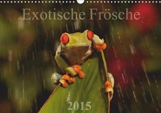 Exotische Frösche - CALVENDO Kalender - http://www.calvendo.de/galerie/exotische-froesche-2/ - #frosch #natur #tierfotografie #kalender #calvendo