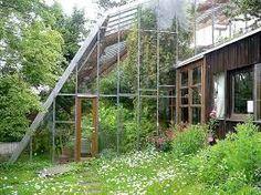 greenhouses bilaketarekin bat datozen irudiak