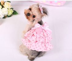 #dress #dogs #pink #clothing #puppy #layered #cotton #clothes
