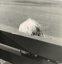 Vivian Maier. Cuando