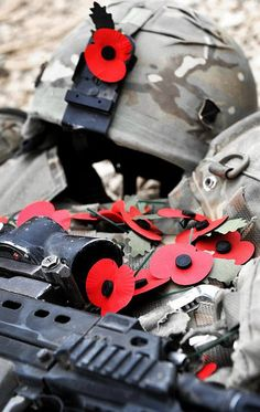 Remembrance Day Poppies Laying on a Soldier's Kit in Afghanistan by Defence Images, via Flickr
