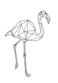 GEOMETRIC FLAMINGO …