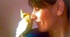 """#Solidarietà in punta d'ali. Serata di beneficenza a sostegno delle donne vittime di violenza. L'Auser di Agna (Pd), con la sua presidente Francesca Tocchio e il Centro Veneto Progetti Donna, in collaborazione con il Centro Sportivo """"Le Tre Piume"""", presentano """"25 anni in punta d'ali"""", cena di beneficenza a sostegno del Centro Veneto Progetti Donna Auser. http://www.ilsitodelledonne.it/?p=17366  Elisa Tocchio"""