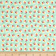 Riley Blake Backyard Roses Berries Mint Fabric By The Yard