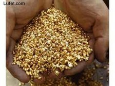 3 Grains Medical Grade Super Refined Pure Gold Shot Bullion - Ideas of Gold Bullion