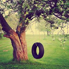 Swing or tire swing in the garden... I always dreamed to have one