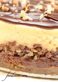 LAYERED TURTLE CHEESECAKE RECIPE ~ The perfect combination of cheesecake, pecans, caramel, and chocolate... Seriously, this is just flat out amazing!