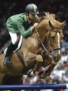 Brazil's Rodrigo Pessoa and Baloubet Du Rouet won numerous championships together, the stallion has since become one of the most influential sires in showjumping