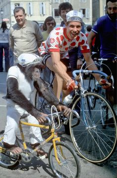 cadenced: Monkeying around…Lucien Van Impe at the 1975 Tour de France Cycling News, Cycling Art, Cycling Bikes, Cycling Events, Montain Bike, Bicycle Rims, Vintage Cycles, Road Bike Women, 1975