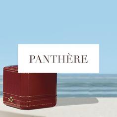 Summer, untamed. #CartierSummer #PanthereDeCartier