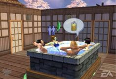 The Sims 2 Gamecube Serenity Falls