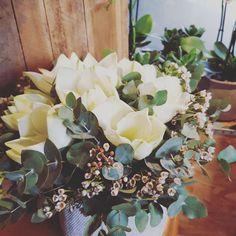 Bouquet d'Amaryllis Bouquet, Most Beautiful Flowers, Nature, Floral Design, Succulents, Composition, Design Inspiration, Seasons, Holiday