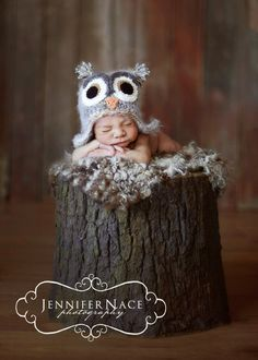 Another very cute baby owl.