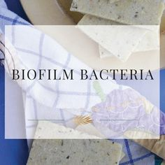 What is Biofilm?