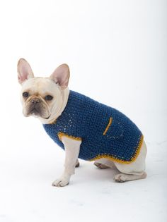 The Casual Friday Dog Sweater Pattern (Crochet)