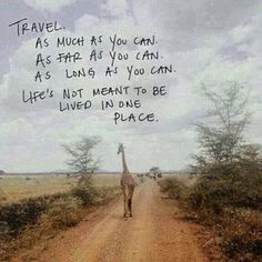 True! And this picture makes us want to go back to #Africa right now. #dream