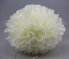 Umiss Tissue Paper Pompom Colorful Hanging Party Supplies in 6 inch Pack of 10 (Ivory White) Umiss http://www.amazon.com/dp/B01E2F72HM/ref=cm_sw_r_pi_dp_F5ofxb1V7YPWK