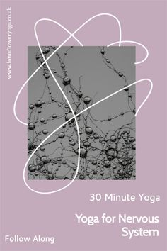 30 Minute Yoga for the nervous system and brain. Perfect practice to calm and soothe the nervous system and rebalance the brain! Home Yoga Room, Yoga Studio Home, Hatha Yoga Poses, Yoga Sequences, Art Of Living Yoga, 30 Minute Yoga, Beginner Yoga Workout, Yoga Quotes, Yoga Lifestyle