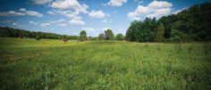 Spotsylvania Battlefield, Virginia. Fredericksburg & Spotsylvania National Military Park