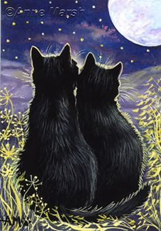Under The Moonlight by Anne Marsh