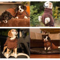Bademantel für kleine Hunde in schickem Braunton