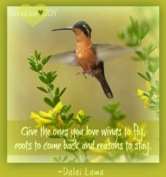 """""""Give ones you love wings to fly"""" quote via www.facebook.com/IncredibleJoy"""