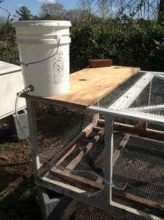 Rabbit Watering System