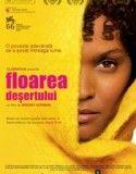 "The film ""desert flower"" inspired by waris dirie real story Desert Nomad, Desert Flowers, In And Out Movie, Hilario, Film Inspiration, I Movie, Good Books, Deserts, Ebooks"