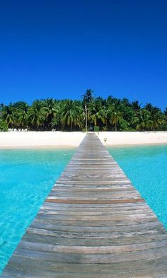Taking a walk on a wooden walkway to a tropical island.