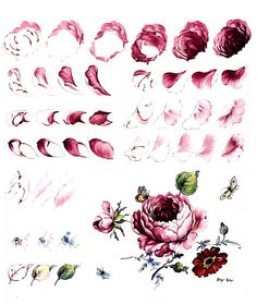 Rose decorative painting steps