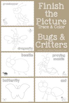 Finish the Picture ~ Trace & Color Bugs and Critters - 1+1+1=1