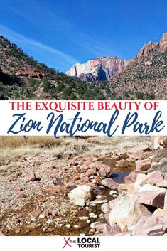 The beauty of Zion National Park is exquisite. Find out what it's like to visit this U. treasure in Utah's canyon country. National Park Lodges, National Parks Map, Zion National Park, Utah Parks, Canyon Country, Travel Usa, Travel Tips, Travel Ideas, Luxury Travel