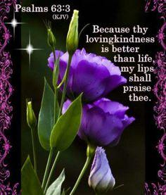 Psalm 63:3. Better than life - Praise Him!