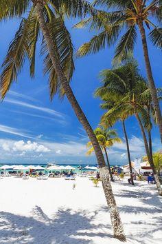 ✮ Beach - Playa Norte, Isla Mujeres, Quintana Roo, Mexico