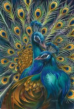 Peacocks.     For more great pins go to @KaseyBelleFox