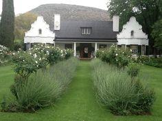 Colonial Architecture, House Architecture, Boxwood Garden, Cape Dutch, African House, Dutch House, Garden Design, House Design, Dutch Colonial