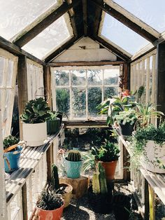 Greenhouse by Kevin Russ #stocksy #realstock