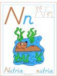 Nuevo Jul/15/12: Actividades y materiales imprimibles Letra N Nutria para educación infantil y preescolar