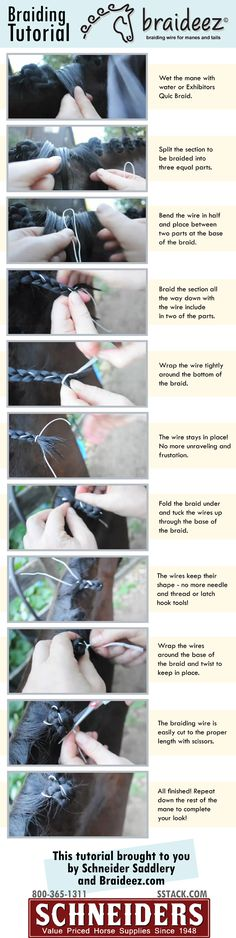 Braideez Tutorial. Horse braiding made simple. By Schneiders Saddlery