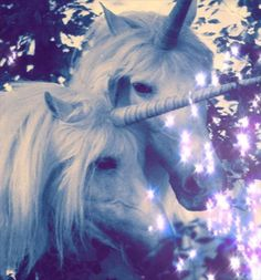Find images and videos about magic, fantasy and unicorn on We Heart It - the app to get lost in what you love. Unicorn And Glitter, Real Unicorn, Unicorn Art, Magical Unicorn, Rainbow Unicorn, Magical Creatures, Fantasy Creatures, Unicorn Fantasy, Fantasy Art