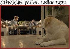 Dinner at Home for Million Dollar Decorators  #jeffreyalanmarks #JAM #Themeaningofhome