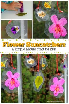 A simple DIY nature suncatcher craft for kids. And easy spring craft for preschoolers and older kids lets explore the natural world of flow. Kids Learning Activities, Spring Activities, Craft Activities, Spring Crafts For Kids, Diy Crafts For Kids, Craft Ideas, Parts Of A Flower, Toddler Crafts, Toddler Play
